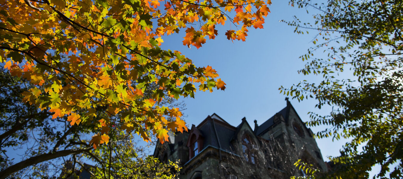 Penn campus in the fall.
